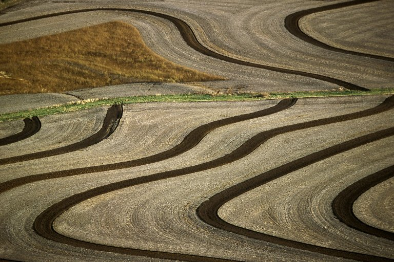 Contoured fields with contrast