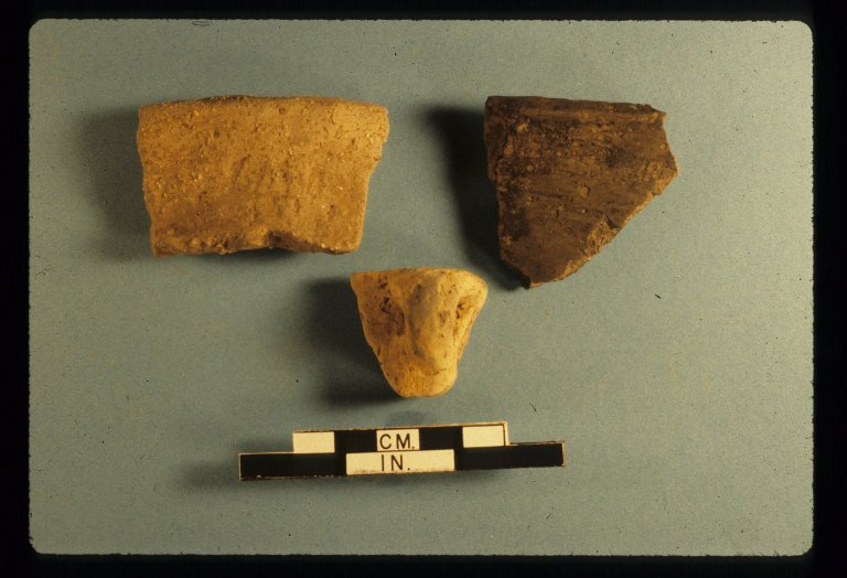 Rim sherds, Area 4, Zacharias site, 14LV380