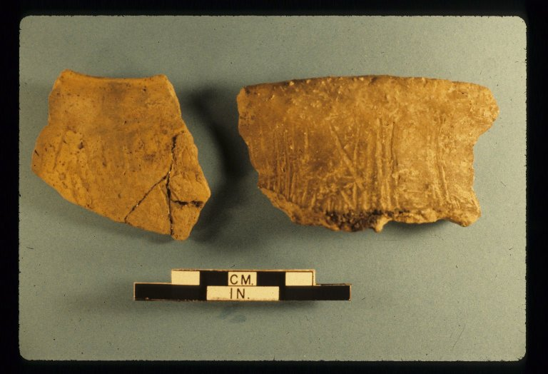 Rim sherds, Area 3, Zacharias site, 14LV380